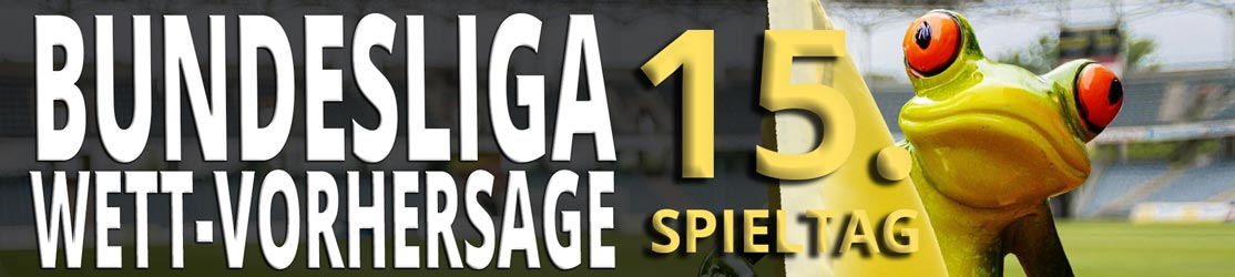 Bundesliga Vorhersage 15